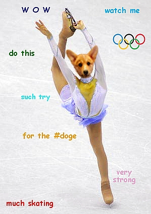 doge olympic skating